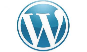 About WordPress Content Management System