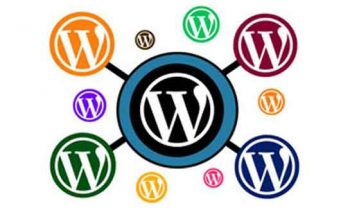 When to use or Not to use a WordPress Multisite