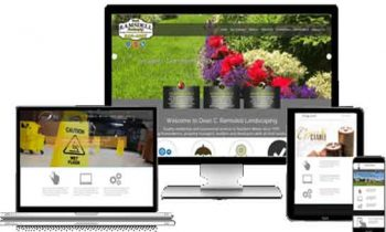 Basic Facts Everyone Needs to Know about Web Design