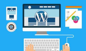 Things to Know Before Starting WordPress Web Development