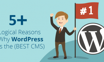 5 Reasons Which Make WordPress the Best Choice for your Business